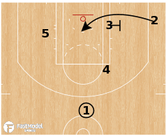 Basketball Play - Toronto Raptors - Flex Floppy