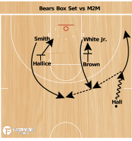 Basketball Play - Bears Box Set