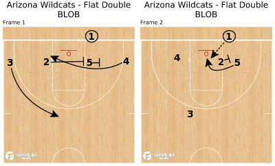 Basketball Play - Arizona Wildcats - Flat Double BLOB