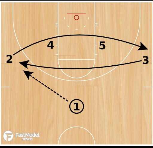 Basketball Play - Cougar
