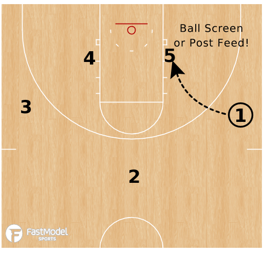 Basketball Play - Maryland Terrapins - Diamond Floppy