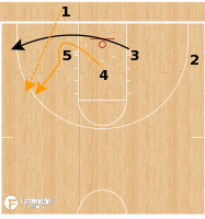 Basketball Play - Florida Gators - 3 Low Circle Fade BLOB